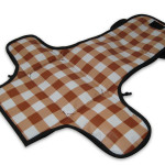 A1511XX_3_PICNICLUNCH_PLACEMAT